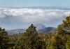 Busstur ovan molnen till Teide på Teneriffa