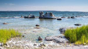 Gotland 2014
