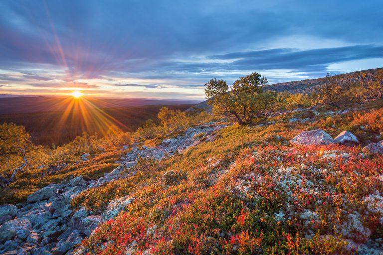 Fulufjället 2015 - Soluppgång