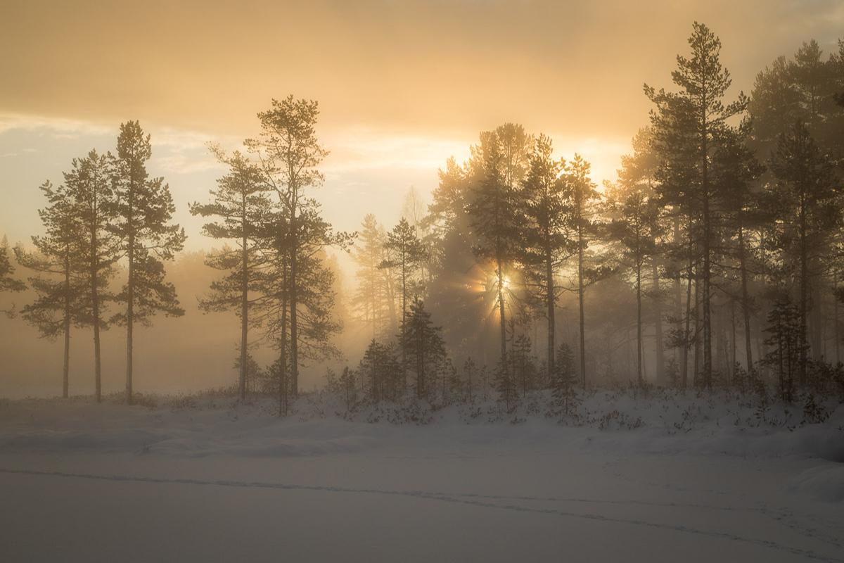 En till bild från gyllene timmen med morgondimma och soluppång vid Tillhedstjärn i Furudal..
